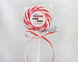 Marturie de nunta acadea colorata cu fundite alb-rosu Just Married